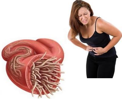основные паразиты в организме человека