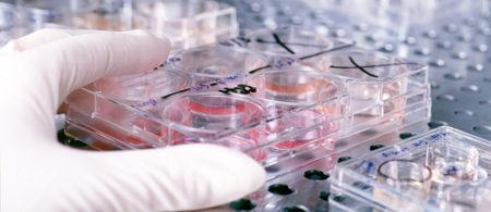 Анализ на маркеры гепатита