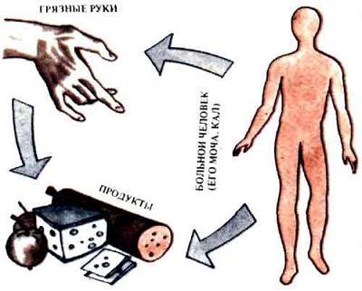 Способов заражения гепатитом A