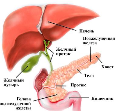 Как лечить подъязычный нерв в до